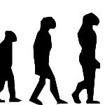 サルから人間