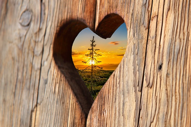 heart-2041866_640