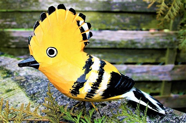 bird-3094918_640