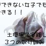garlic-3380704_640