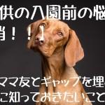 dog-3277416_640