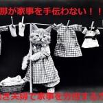 cat-316994_640