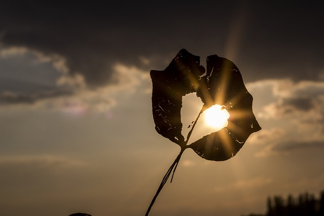 sun-622740_640