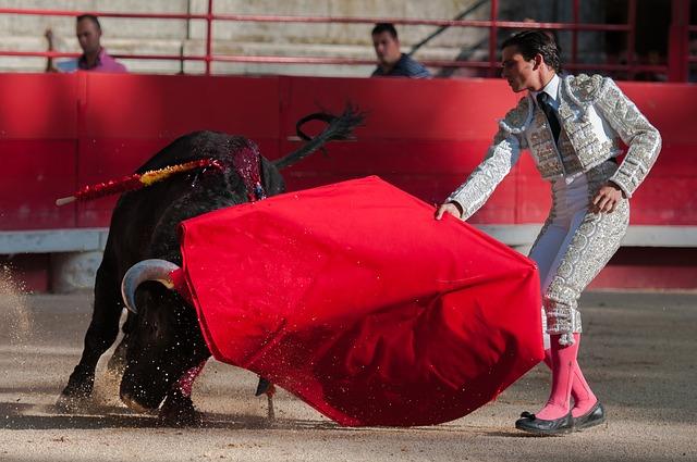 bullfight-2012796_640