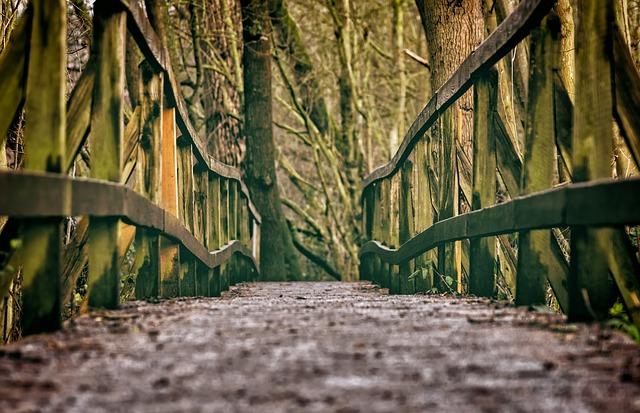 bridge-3024771_640