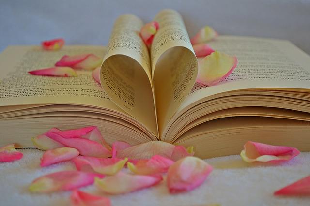 book-1169437_640
