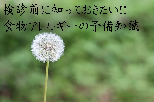 dandelion-1112399_640