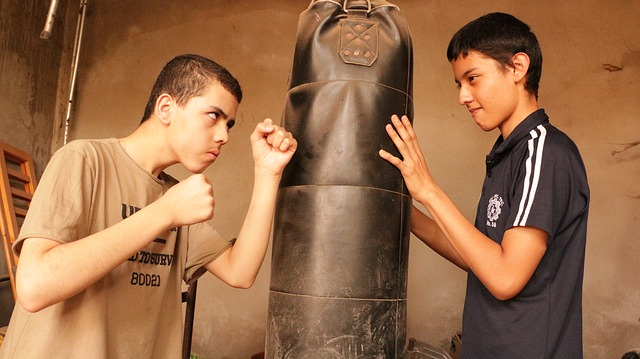 youth-boxing-3383539_640
