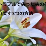lily-3763573_640